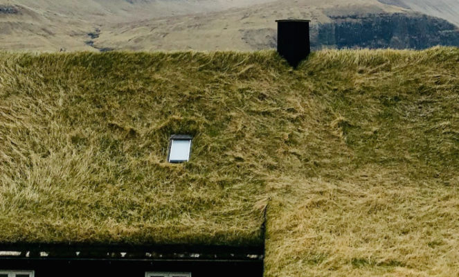 Dachbegrünung auf dem Metalldach